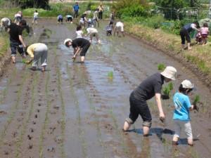 2012年 田植え体験