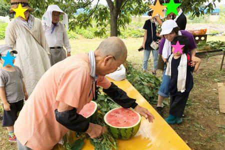 大豆のまめちゃんプロジェクト 枝豆収穫体験を開催